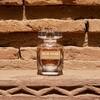 Elie Saab Le Perfume Essential Woda Perfumowana (50 ml)