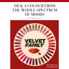 Bourjois Rouge Edition Velvet Lipstick (6,7 ml), 29 Nude York