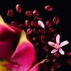 Yves Saint Laurent Black Opium Neon Woda Perfumowana (30 ml)