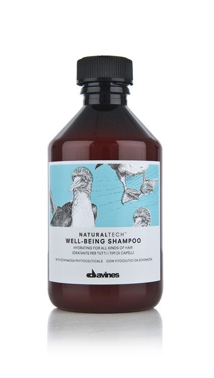 Davines NATURAL TECH Well-Being Shampoo (250ml)